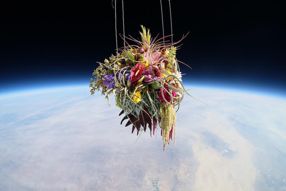 Des fleurs dans l 39 espace la joie des fleurs for Site de fleurs