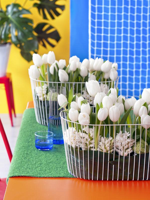 la tulipe   la joie des fleurs