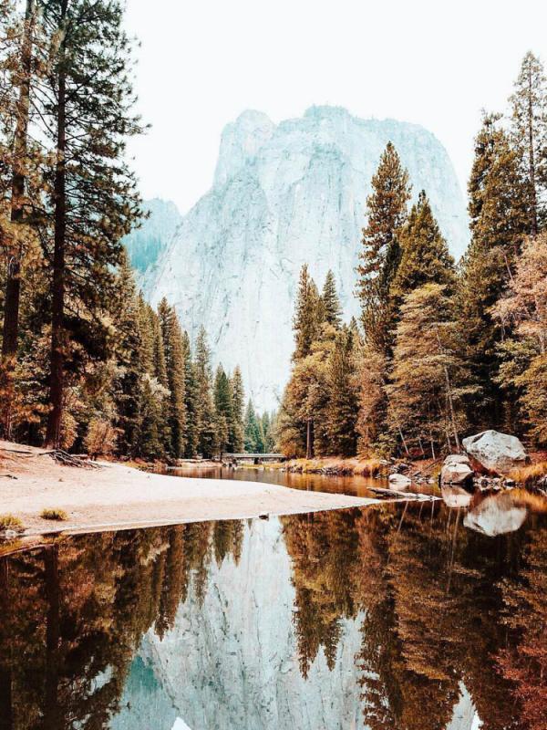 Les cinq plus beaux parcs naturels d'Amérique du Nord Lajoiedesfleurs.fr